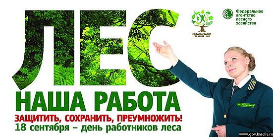 фото день работника леса
